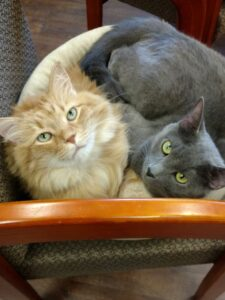 Clyde & Fergus